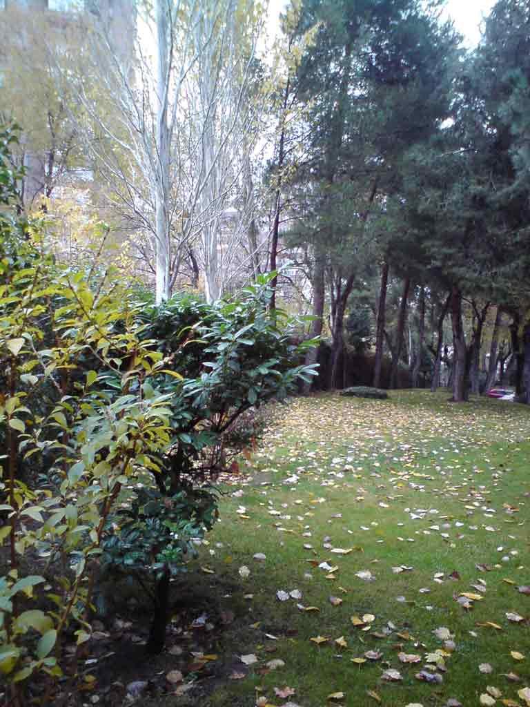 jardines-4